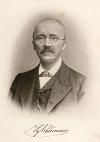 Heinrich Schliemann Quotes, Quotations, Sayings, Remarks and Thoughts