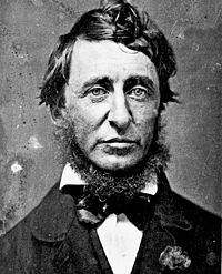 Henry David Thoreau Quotes, Quotations, Sayings, Remarks and Thoughts