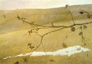 Andrew Wyeth Quotes, Quotations, Sayings, Remarks and Thoughts