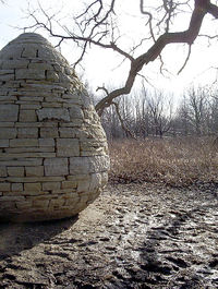 Andy Goldsworthy Quotes, Quotations, Sayings, Remarks and Thoughts